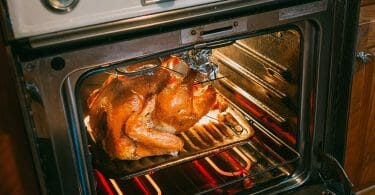 Can Toaster Oven Replace Normal Oven 2